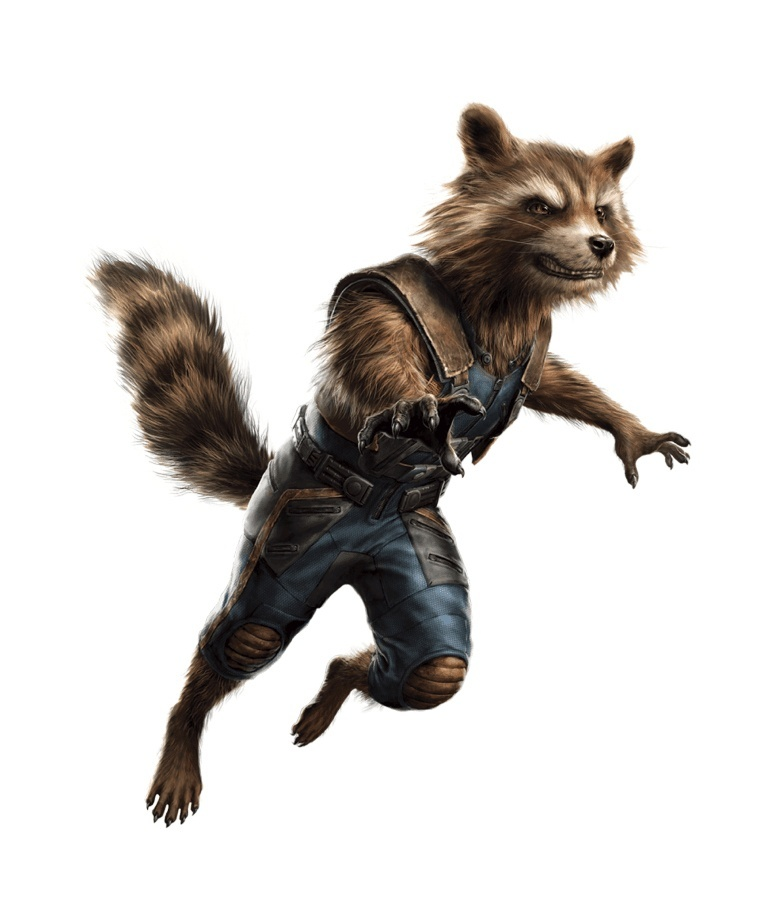 The Avengers 4 Rocket Raccoon