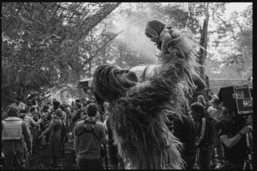 Star Wars: Episode IX Chewbacca