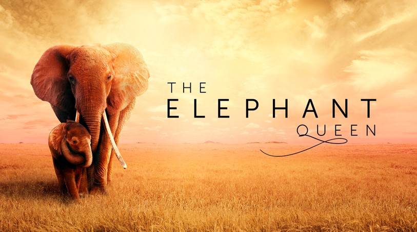 Elephant Queen Apple TV Plus