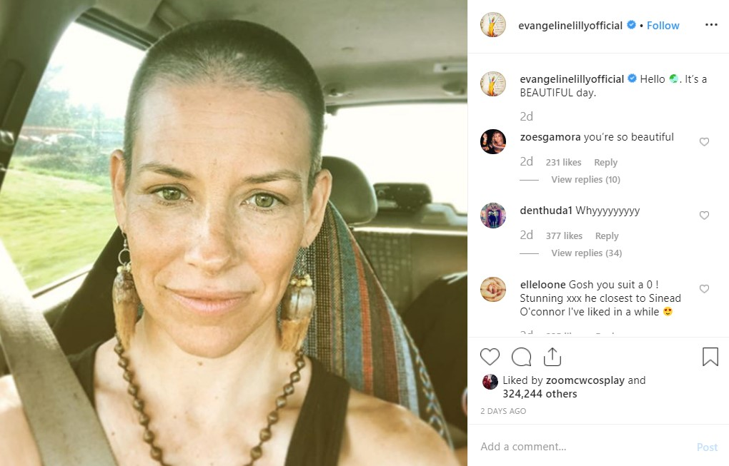 Evangeline Lilly shaved head