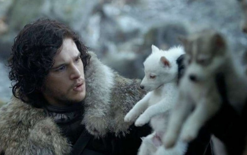 Game of Thrones Jon Snow Dire Wolf
