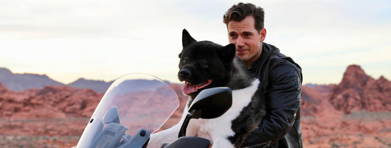 Henry Cavill dog