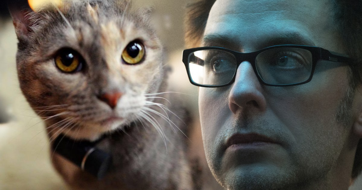 Captain America Fan Hopes James Gunn's Cat Gets Thrown Into Wood Chipper