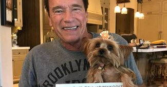 Arnold Schwarzenegger In The Hospital