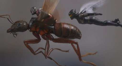 Ant-Man and the Wasp Tracking